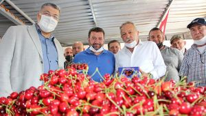 """CHP'li vekiller sahada: """"Çiftçimiz yoksullaşıyor"""""""