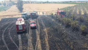 İzmir'de büyük arazi yangını: 40 dönüm arazi kül oldu!