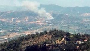 İzmir'de çıkan orman yangını 2,5 saatte kontrol altına alındı!
