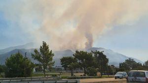Köyceğiz'deki makilik yangınında, söndürme çalışmaları sürüyor