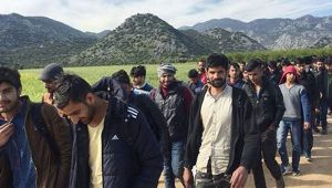Almanya, Hollanda ve Fransa'dan kaçak Afganlarla ilgili karar