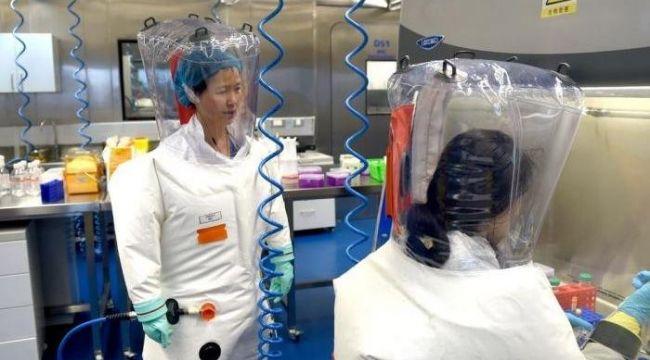 Çin köşeye sıkıştı: Corona virüsü ilk nerede ortaya çıktı?