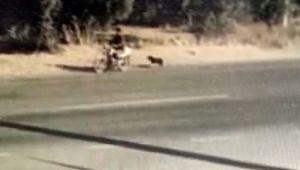 İzmir'de köpeğe işkence! Motosikletin peşinde sürükledi…