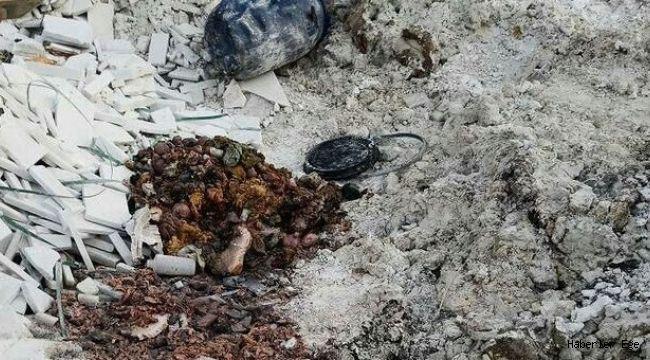 İzmir'de vahşet! Boş arazide insan vücudu parçaları bulundu